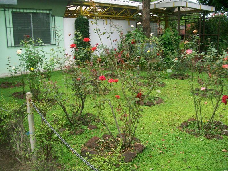 JardinDeRosas (3)